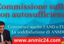Nuova commissione sulla non autosufficienza, convocate anche FAND e FISH, la soddisfazione di ANMIC